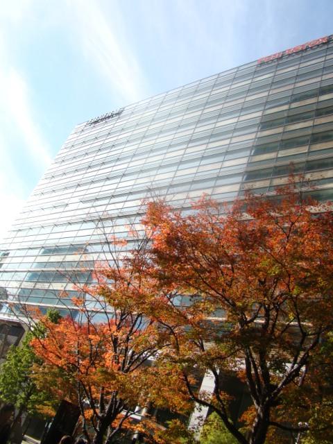 20091212 東京ミッドタウン 015.jpg