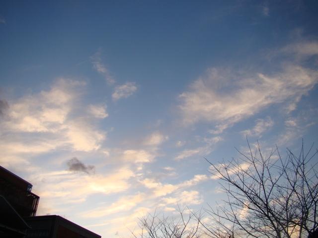 20091212 東京ミッドタウン 074.jpg