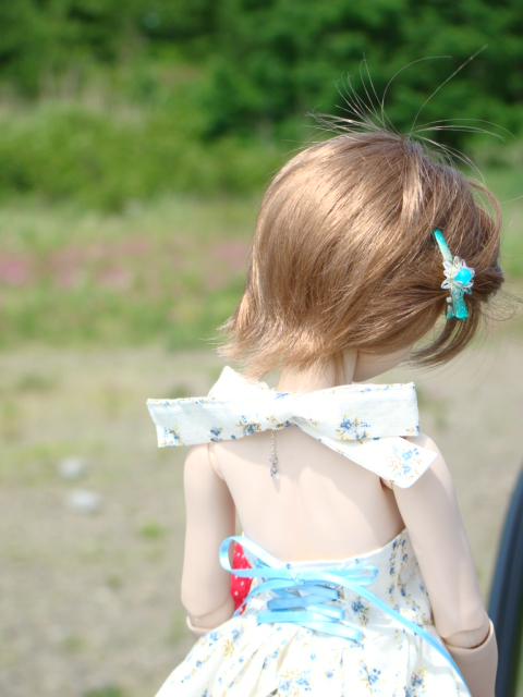 2009年6月 河口湖撮影旅行 西湖~蔵ベット 009.jpg