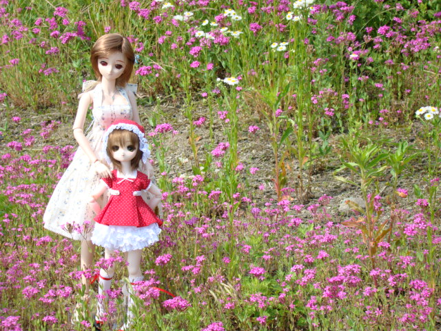 2009年6月 河口湖撮影旅行 西湖~蔵ベット 010.jpg