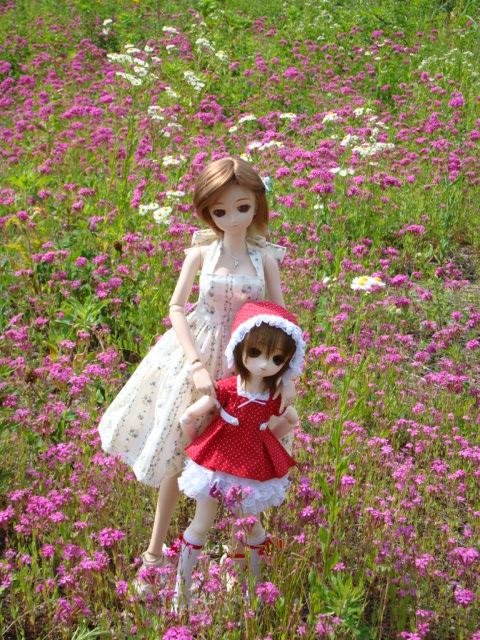 2009年6月 河口湖撮影旅行 西湖~蔵ベット 011.jpg