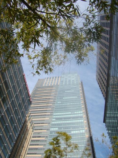 20091212 東京ミッドタウン 009.jpg