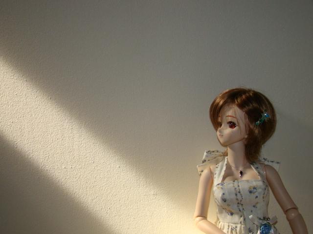 2009年6月 河口湖撮影旅行 蔵~むふふ 003.jpg