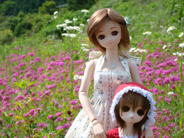 2009年6月 河口湖撮影旅行 西湖~蔵ベット 012.jpg