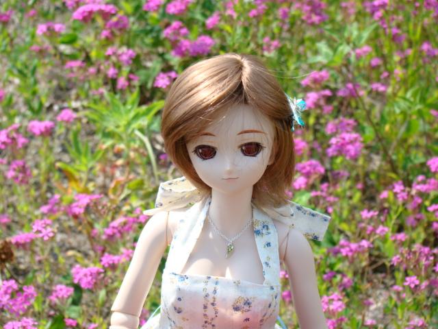 2009年6月 河口湖撮影旅行 西湖~蔵ベット 014.jpg